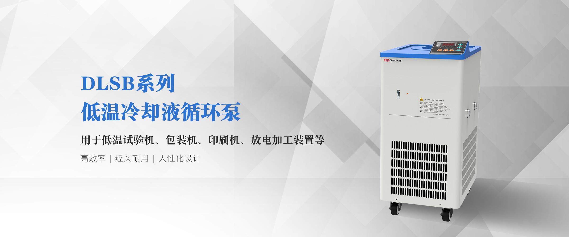 DLSB低温冷却液循环泵 (1)