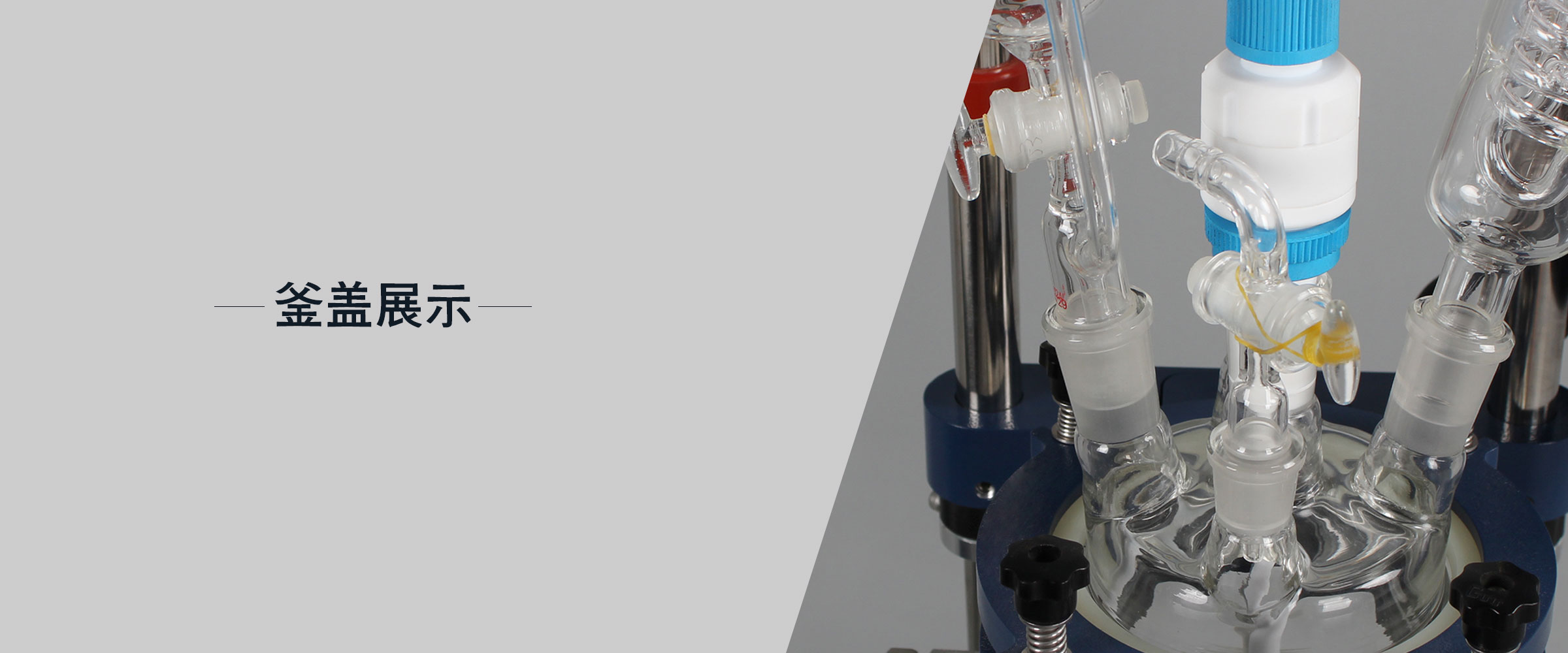 玻璃反应釜 (5)