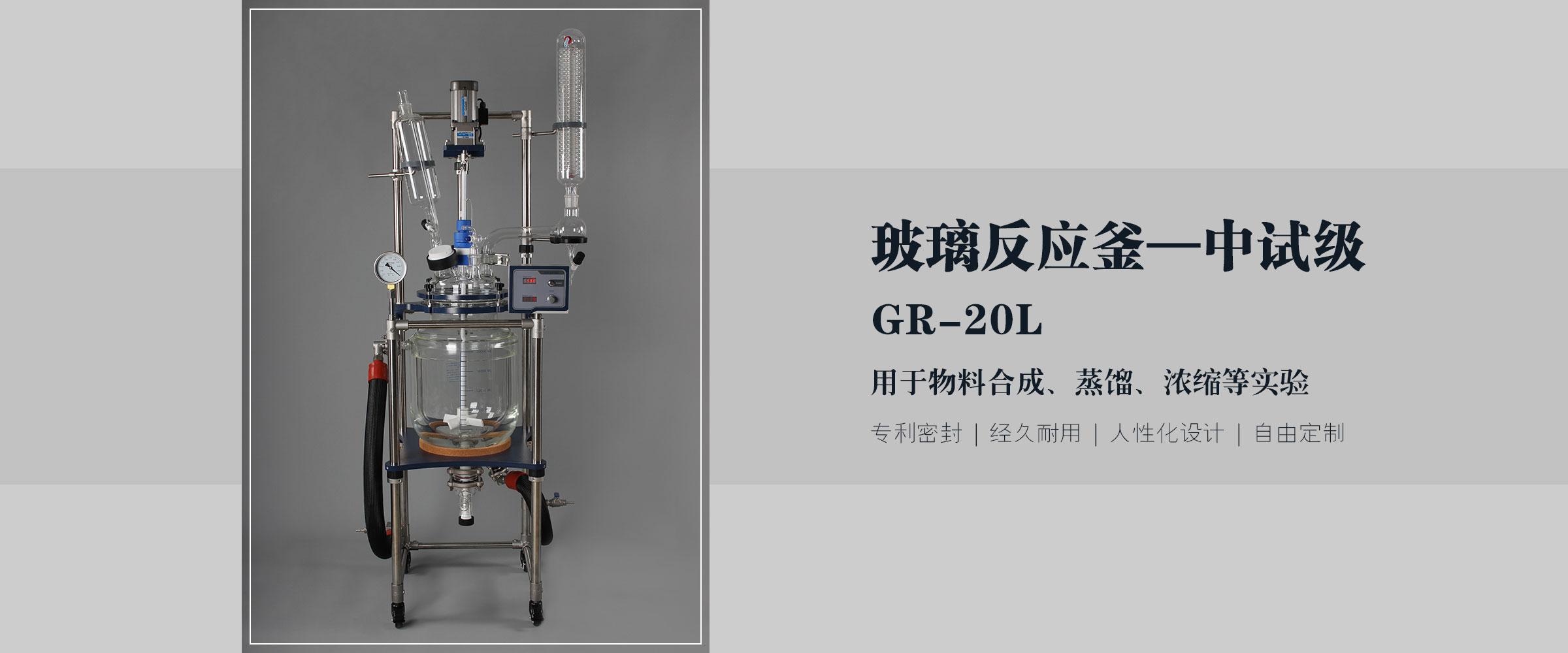 调速玻璃反应釜 (1)