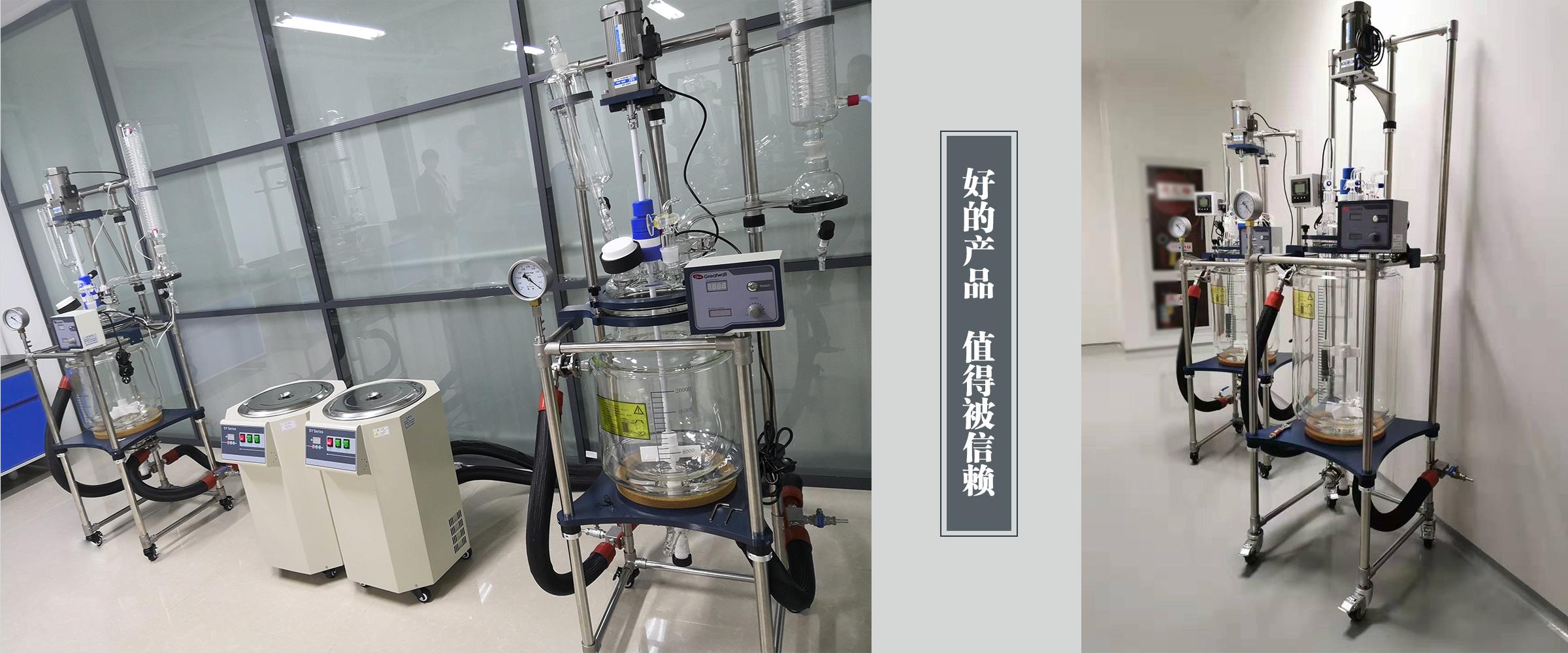 调速玻璃反应釜 (13)